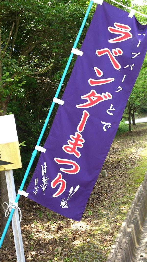 2015-06-21 12.07.19_R